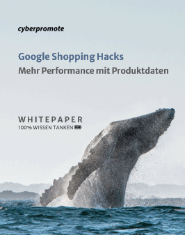 Google Shopping Hacks Whitepaper