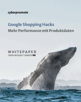 Google Shopping Hacks Whitepaper