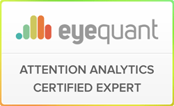 Usability Expert Aufmerksamkeitsanalyse