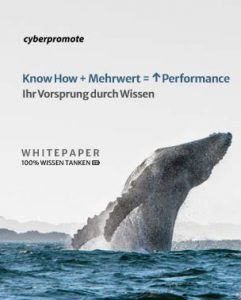 SEO SEA Whitepaper