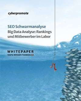 Big Data SEO Schwarmanalyse